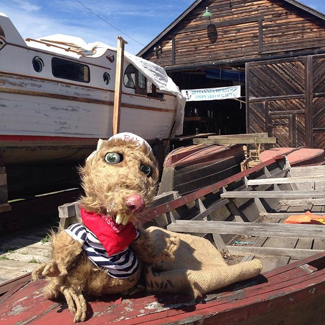 #RichmondMaritimeFestival is August 12 & 13 and spokesrat - Rikki the Rat has taken over the @funrichmond Instagram! Follow along for more photos & fun!