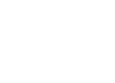 Cape Town Bucket List  |  Seal Snorkeling  |  LOWEST PRICE in Cape Town