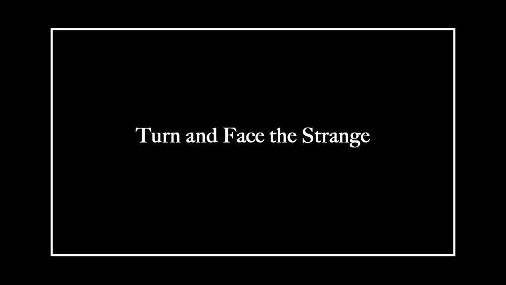 turnandface.jpg