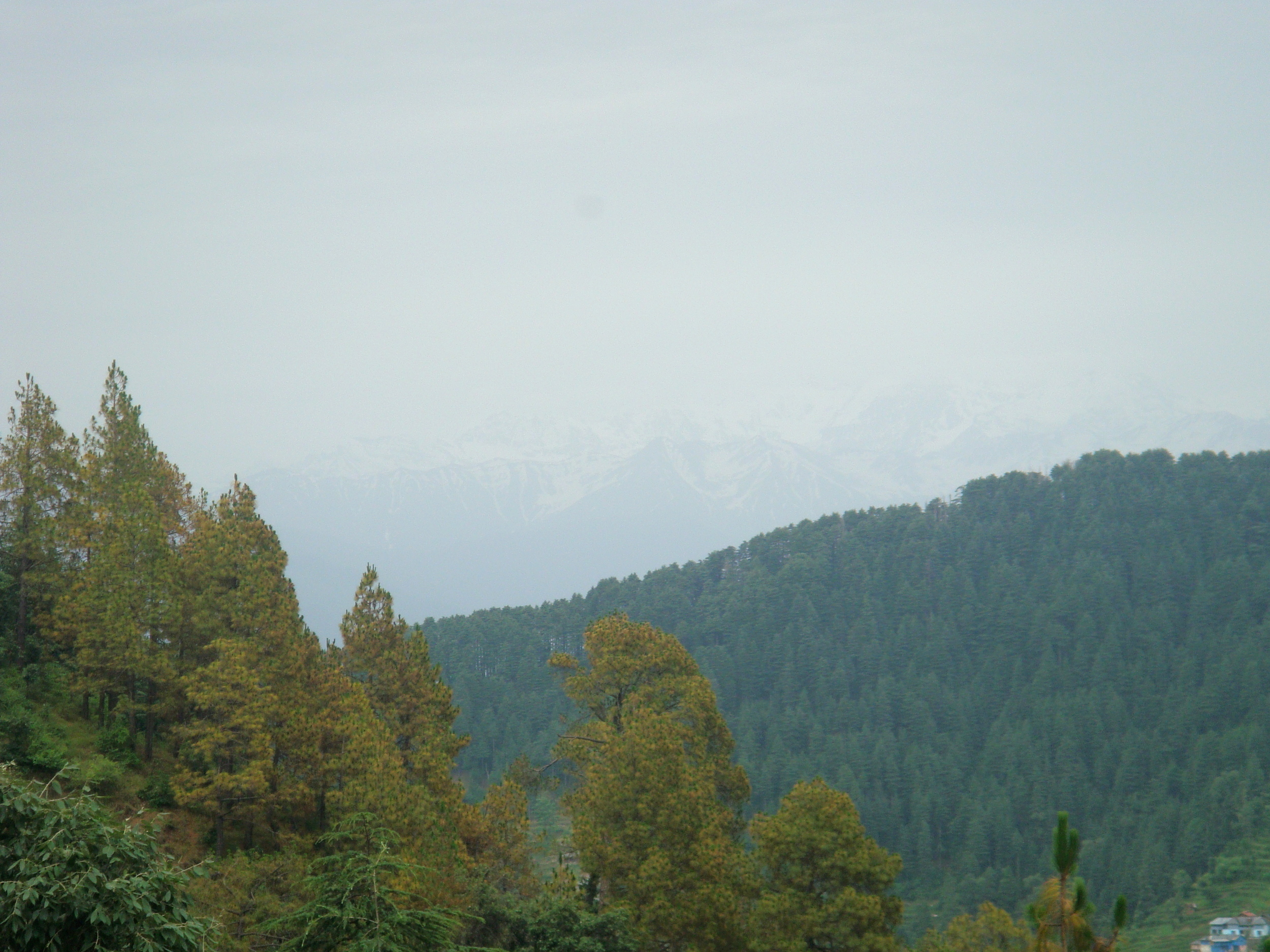 The Dauladhar Range at the horizon