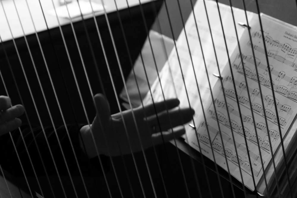 Harpist at the Heathman Hotel