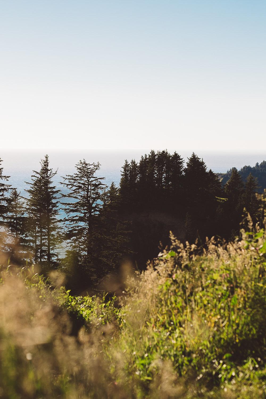 Oregon Coast Engagement-1.jpg