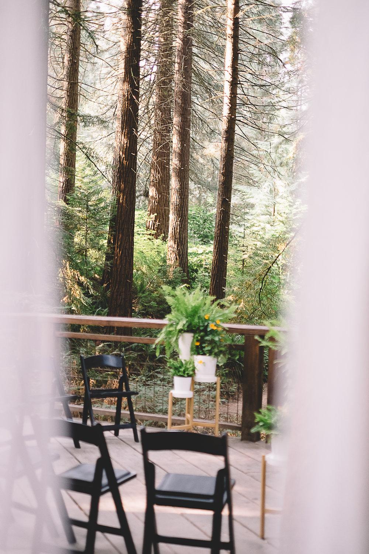Hoyt Arboretum-2.jpg
