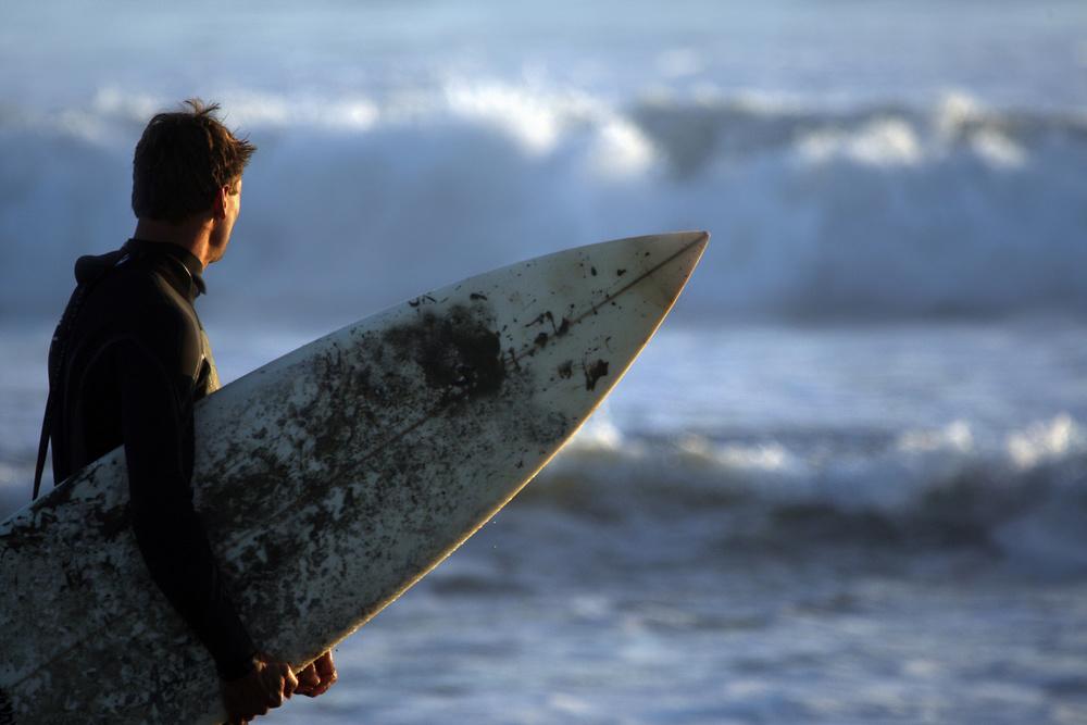 Hvaler surfing