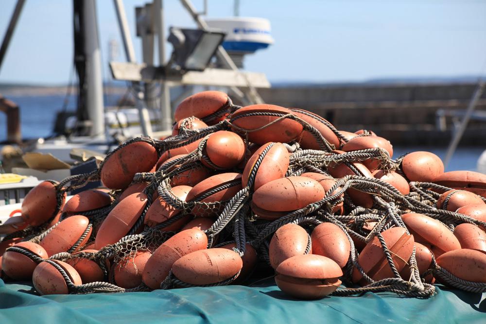 Det er fremdels noen fiskere som har base i Vikerhavn.