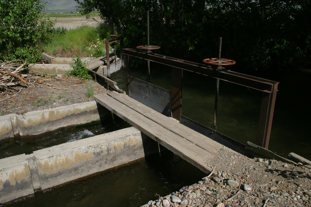 Irrigation canals stemming from the Big Wood River in southern Blaine County form an intricate water delivery system. The Wood River Legacy Project is working to return some of that water to the region's rivers. (photo by Greg Stahl)