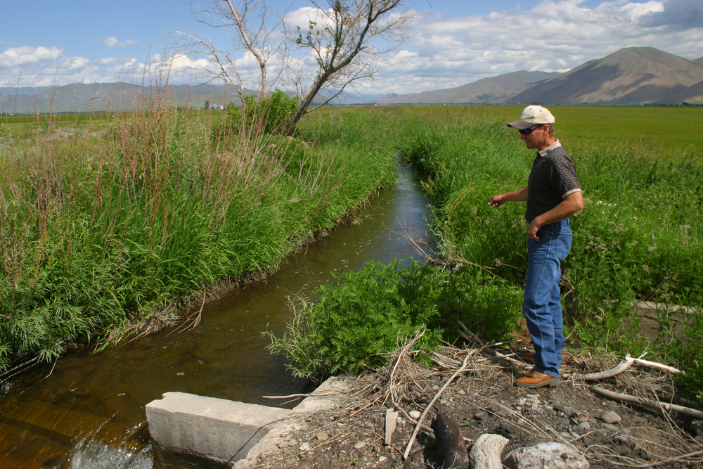 Near the end of the District 45 Canal in the Bellevue Triangle of southern Blaine County, Watermaster Kevin Lakey explains how water is moving and how the Wood River Legacy Project is altering the way that water moves. (photo by Greg Stahl)