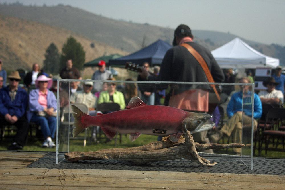 Salmon+Fest+201218-2053125363-O.jpg