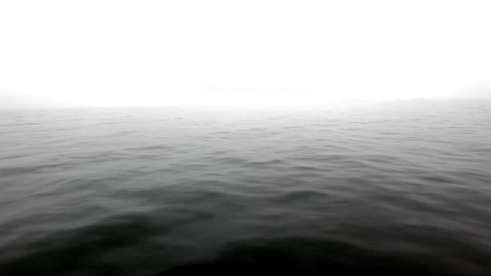 30 NEAR(ER)Stillopenwaterdark.jpg