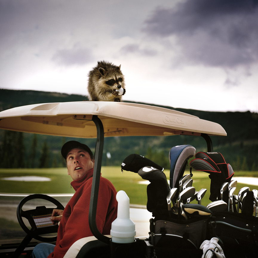 KN 27. LOST BALLS - Raccoon + Golfer- Golf Cart. Montana. Full MR.jpg
