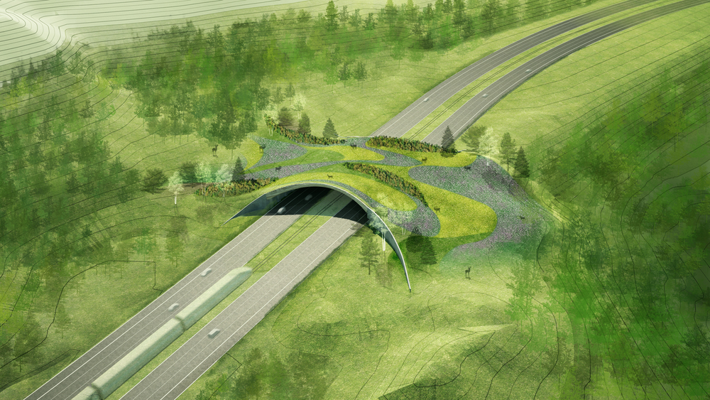BA_ARC Wildlife Crossing_Main_Birdseye.jpg
