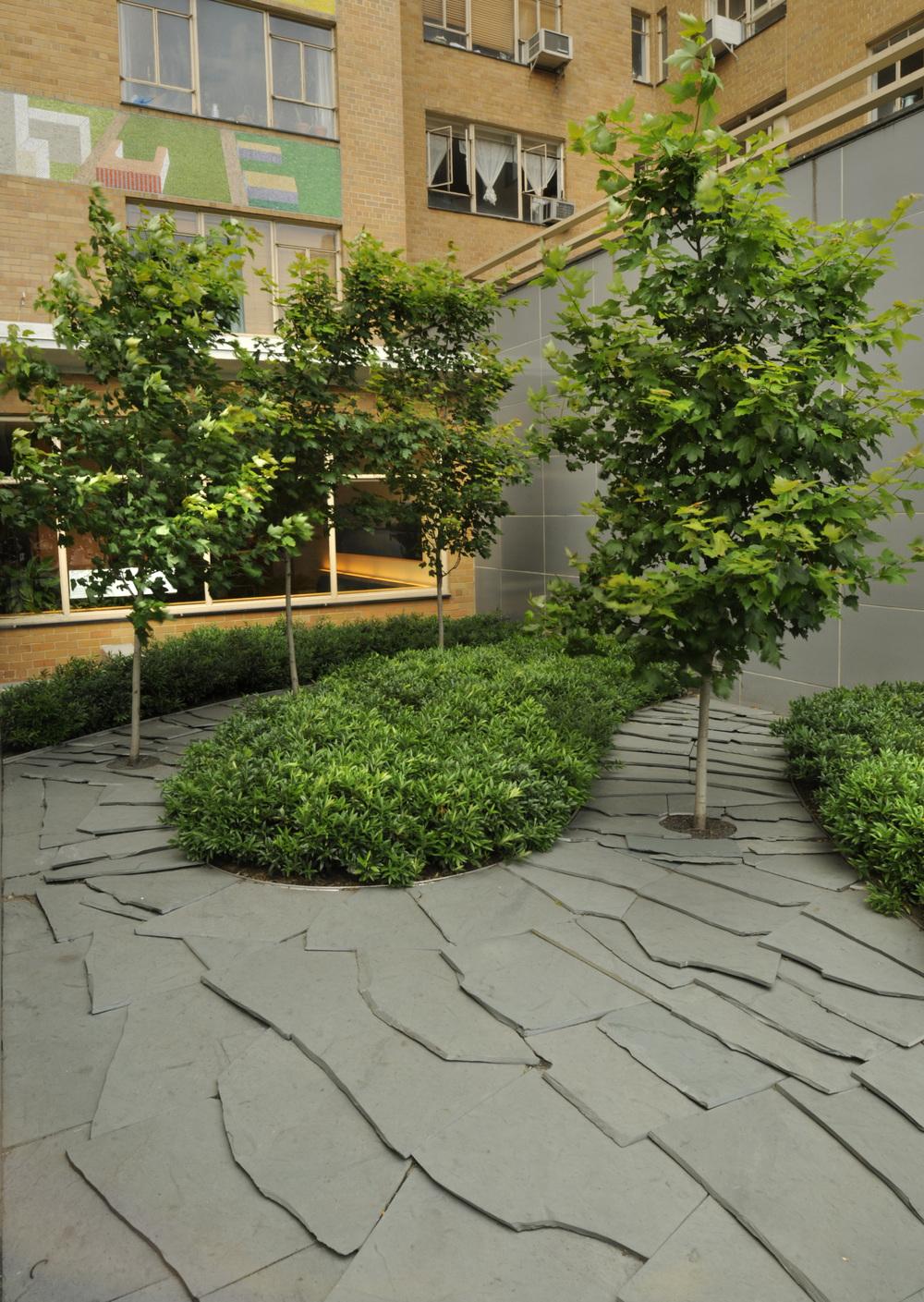 BA_240 Central Park_Mark Dye_front plantings.jpg