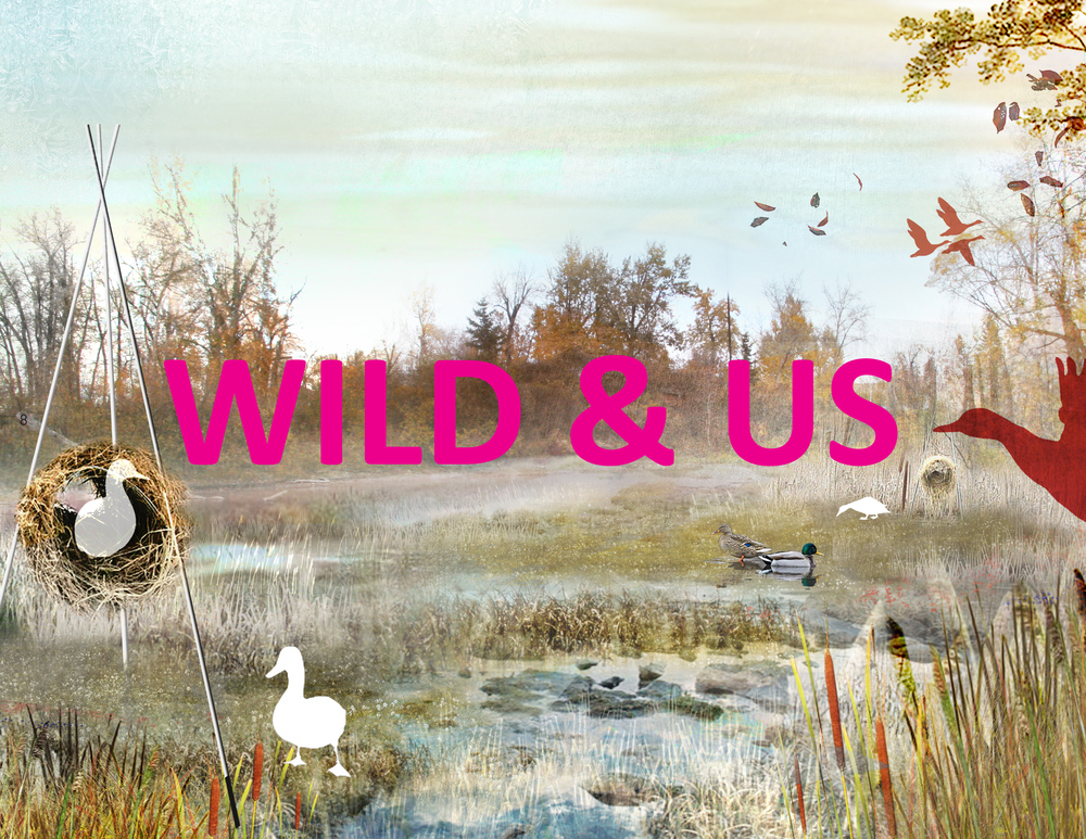 BA_calgary_wild and us_2.jpg