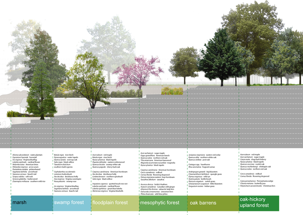 BA_bealestreet_planting palette.jpg