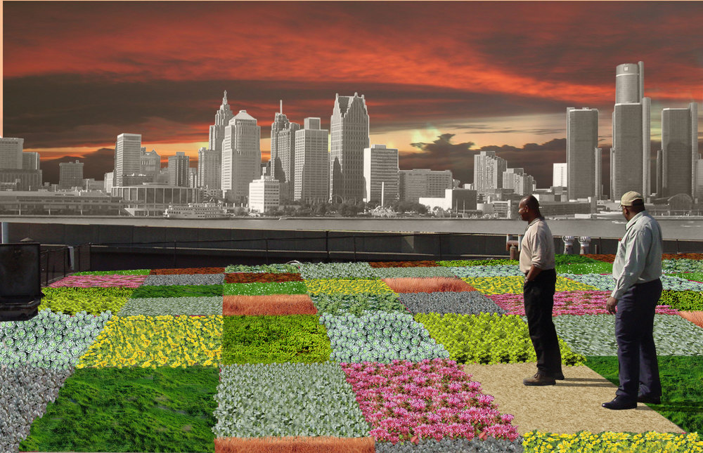 BA_Detroit_GreenRoofView.jpg