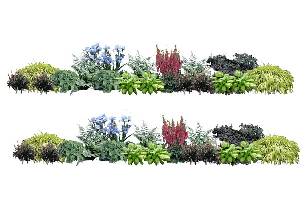 BA_Bartscherer Garden_3.jpg
