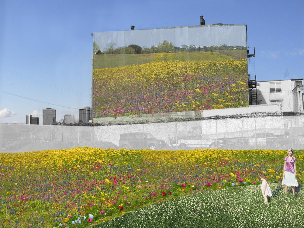 BA_Urban Meadow_5.jpg