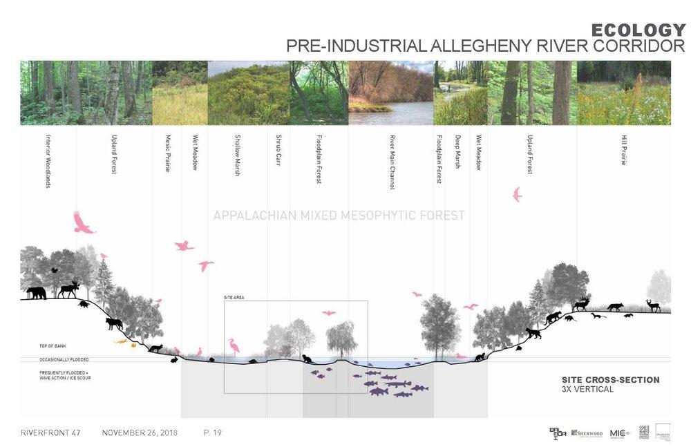 pre-industrial allegheny river.jpg