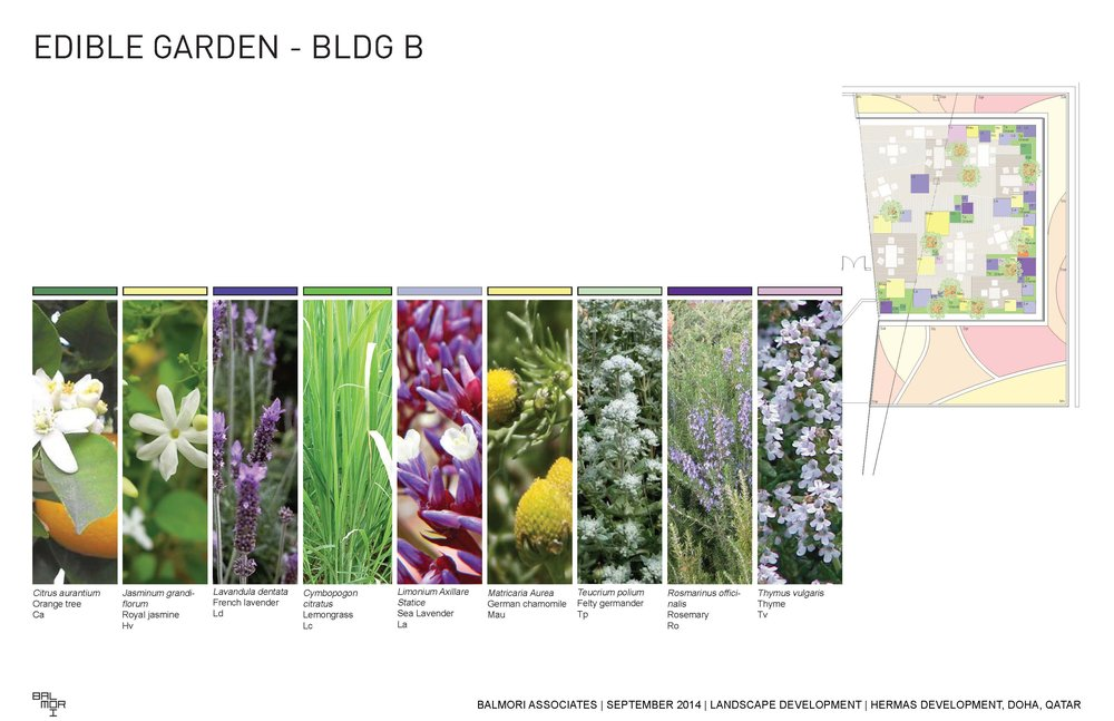 140915 BA_Doha update_presentation_Page_30.jpg