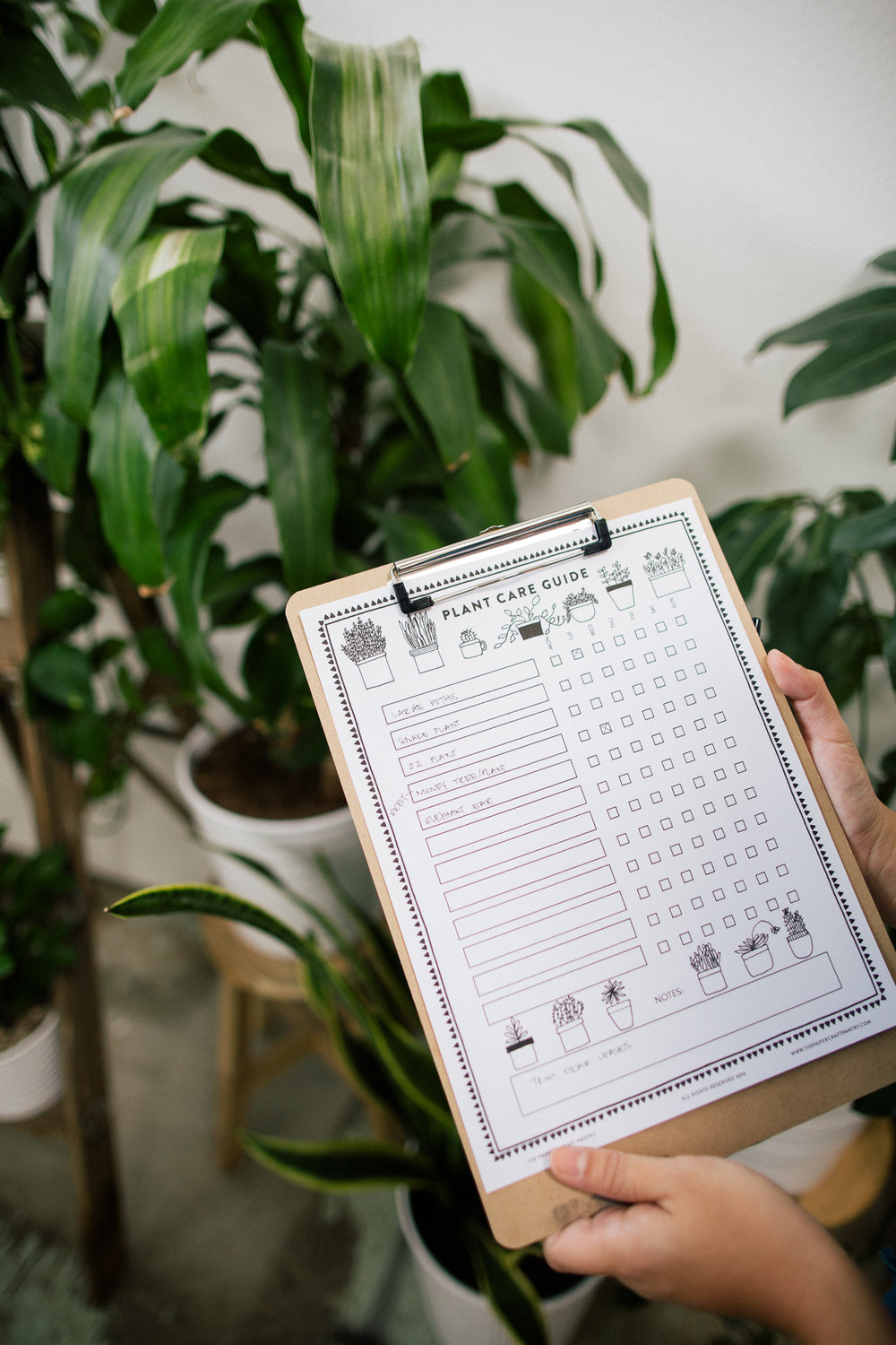 Printable Plant Care Guide