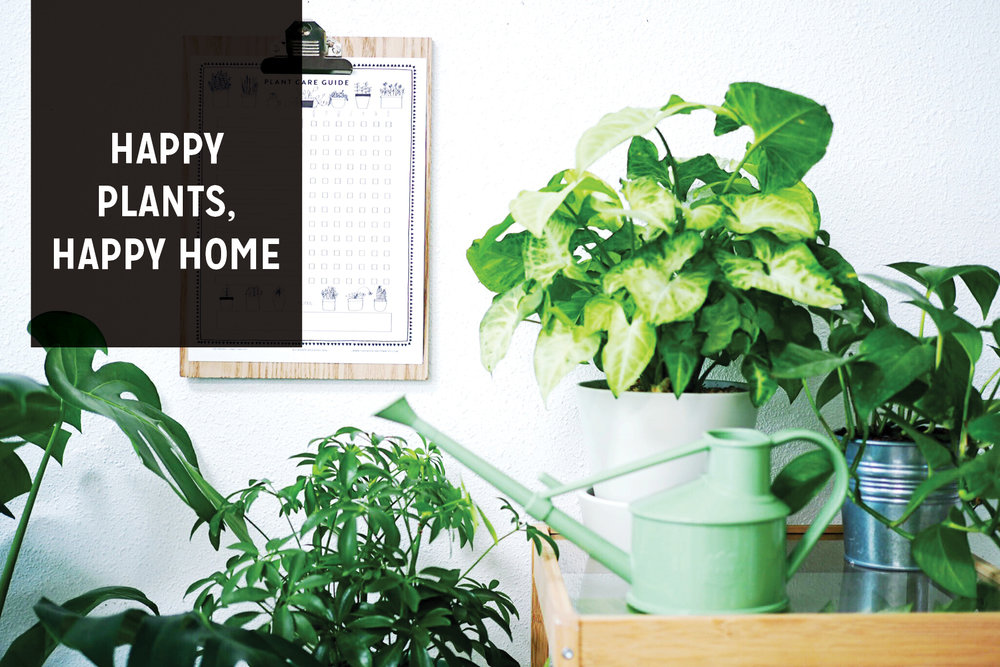 Paper Craft Pantry House Plant Care Guide + Watering Schedule Printable