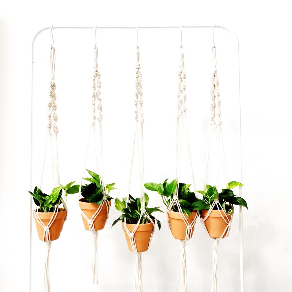 Houston Beginner Macrame Planter Workshop