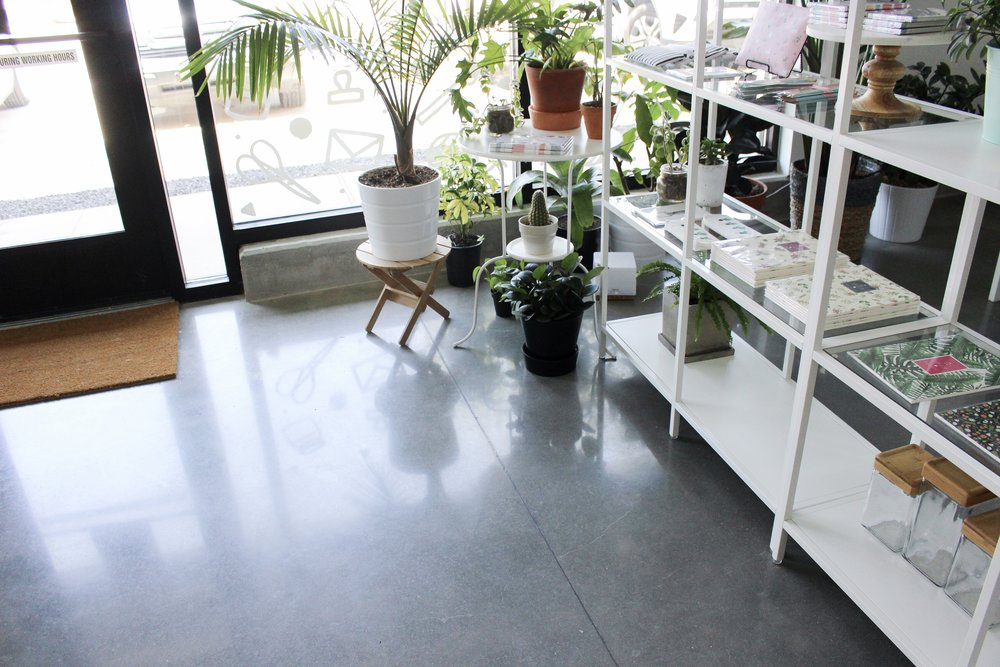Paper + Craft Pantry Blog: We love to fill the space with gorgeous house plants.