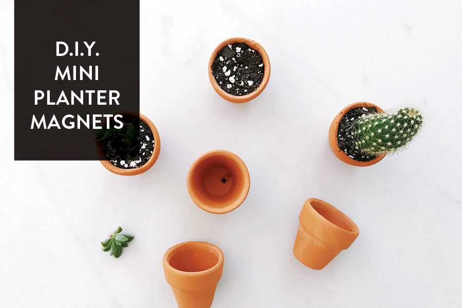The Paper Craft Pantry: D.I.Y Mini Planter Magnet