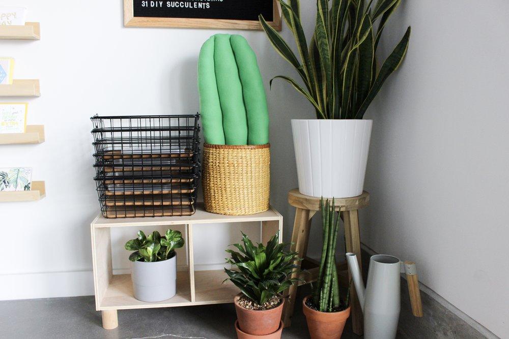 thepapercraftpantry-blog-felt-cactus-pillow-craft.jpg