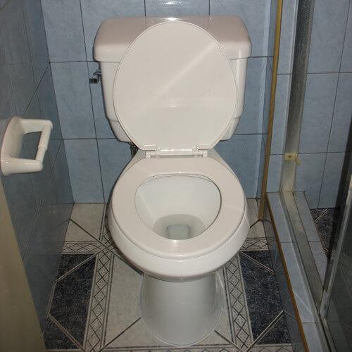 Toilet Reset