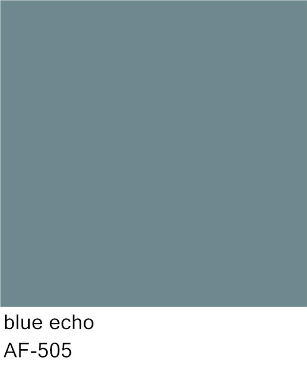blueecho_AF-505-OPT.jpg