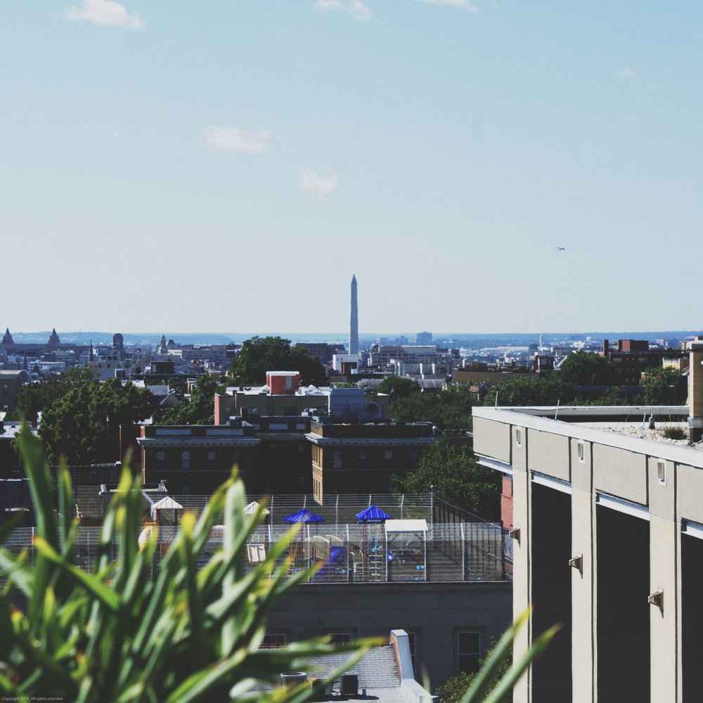 DC_Skyline_Washington_Monument.jpg