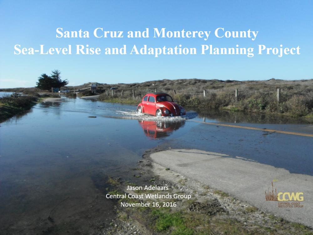 Sea-level Rise and Adaptation