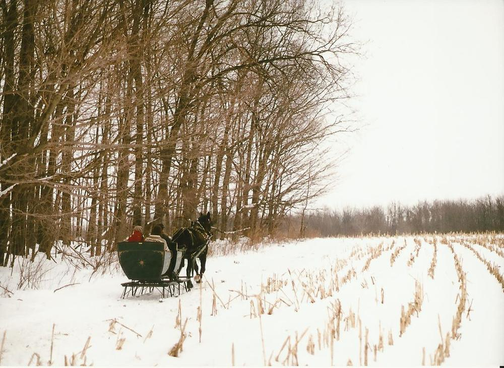 sleigh page photo nine.jpg
