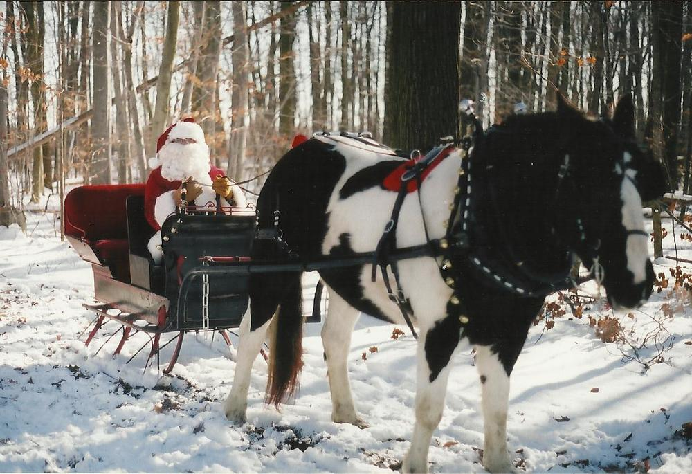 sleigh page photo twenty one.jpg