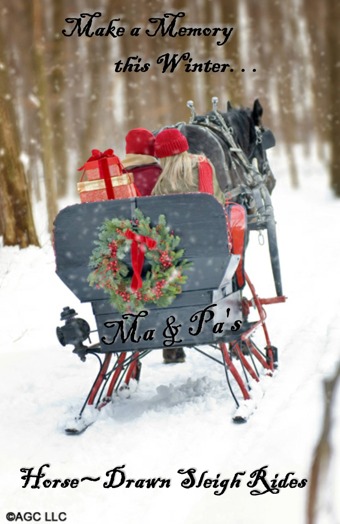 Horse Drawn Sleigh Ride 2 adults 2 kids 5-10 years Old — Ma & Pa\'s