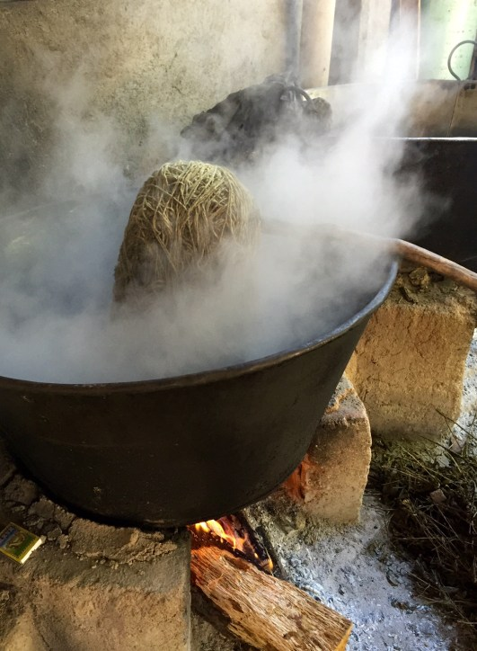 Steamy Dye Pot. Photo - Oaxaca Cultural Navigator