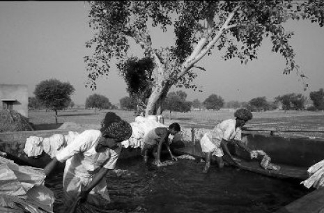 Aravali varsha_washing_the_fabrics_after_printing_2.jpg