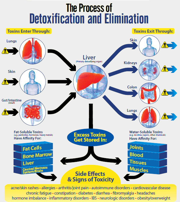 Detoxification System