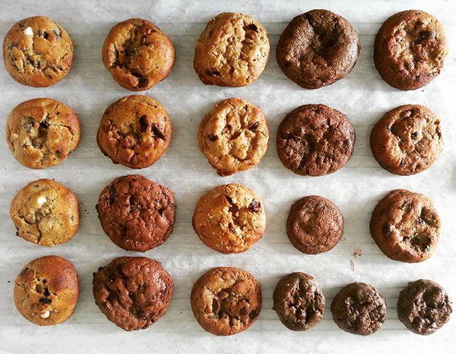Cookie taste testing.