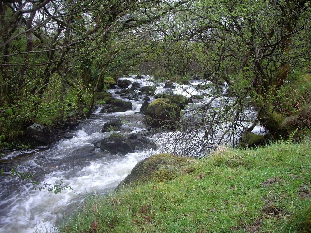 River cascading by Snowdon Lodge 006.JPG