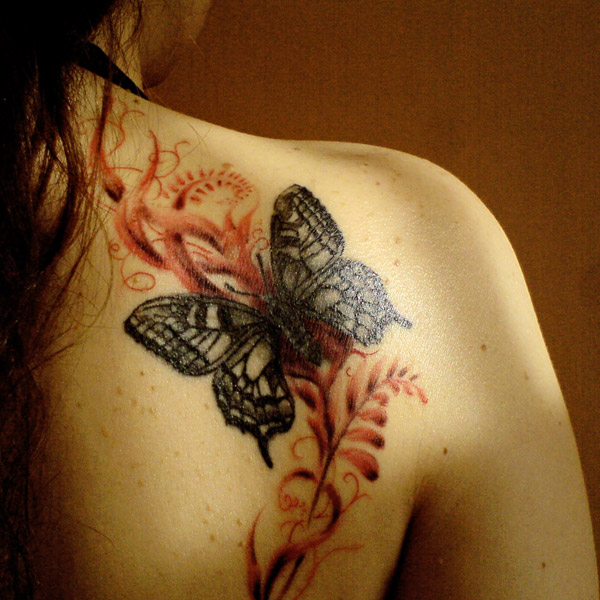Butterfly and freehand sepia