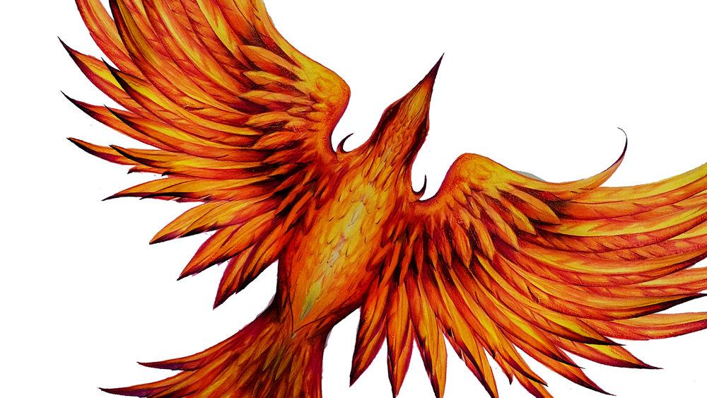 phoenixart.jpg