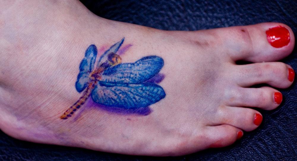 sadragonfly.jpg