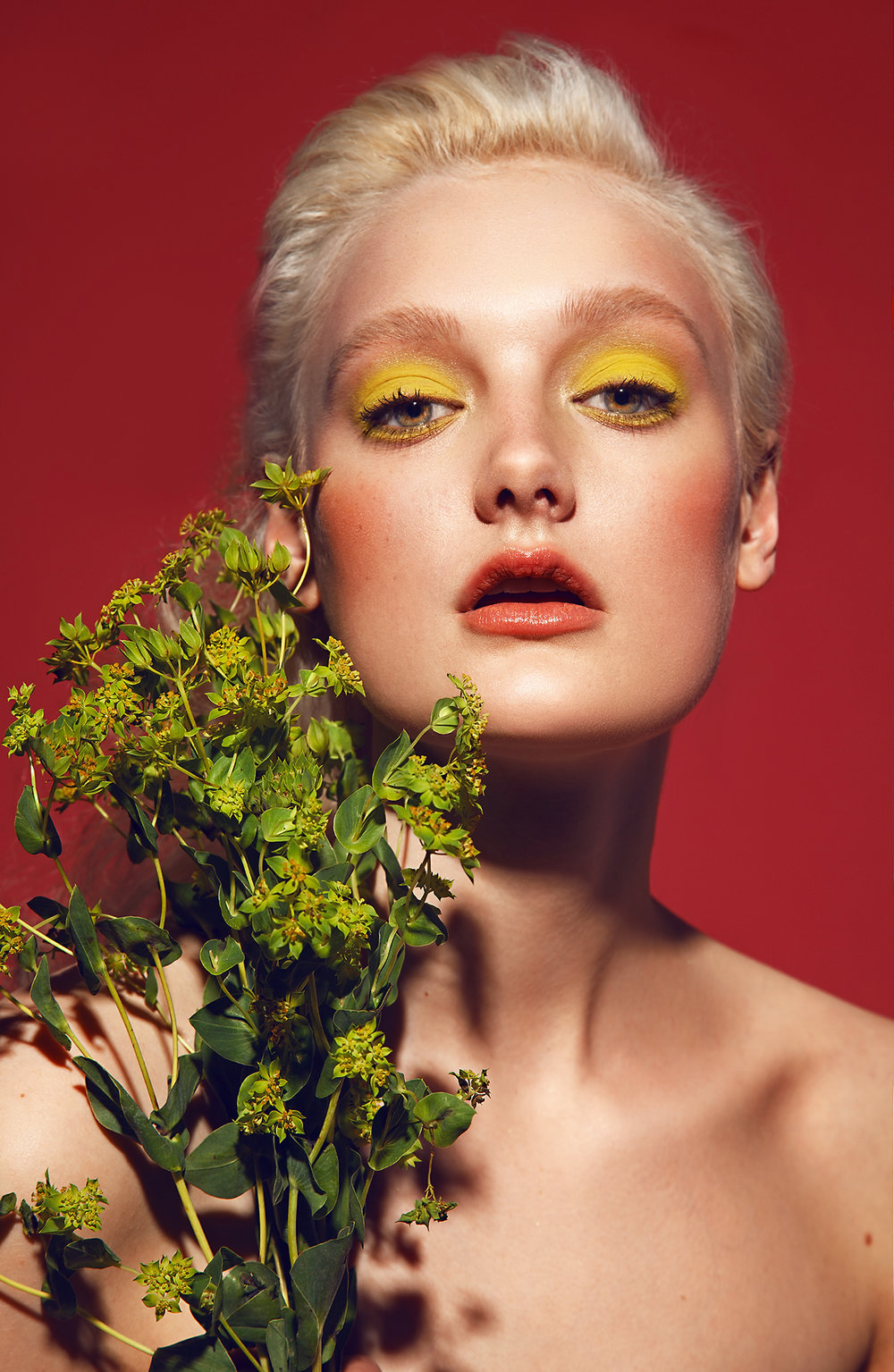 Beauty-Photography-by-beauty-Photographer-Dana-Cole-yellow-eyeshadow-makeup-fashion-model-heartbreak-models-flowers-profoto-blonde-model-red-lips-beauty-photo-colorful-makeup.jpg