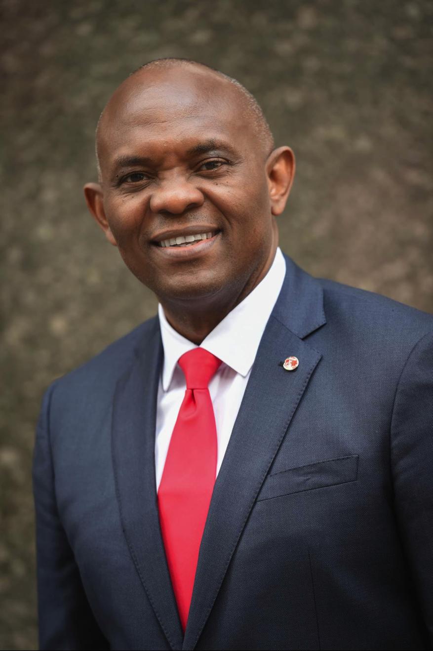 Tony Elumelu // Source: ardenkitomaritz.blogspot.com.ng/ // [@tonyoelumelu]