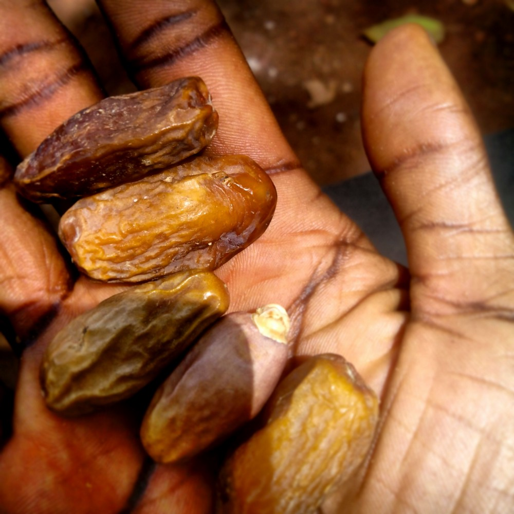 Street snack: Dry dates