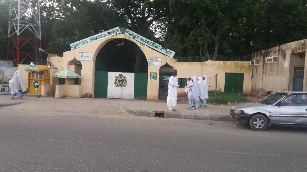 School girls chatting at the entrance gate of the Kano Zoo