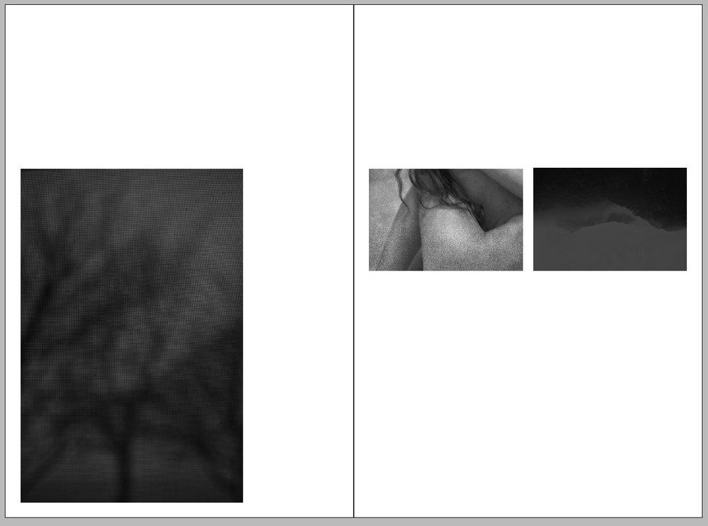 spread3.jpg