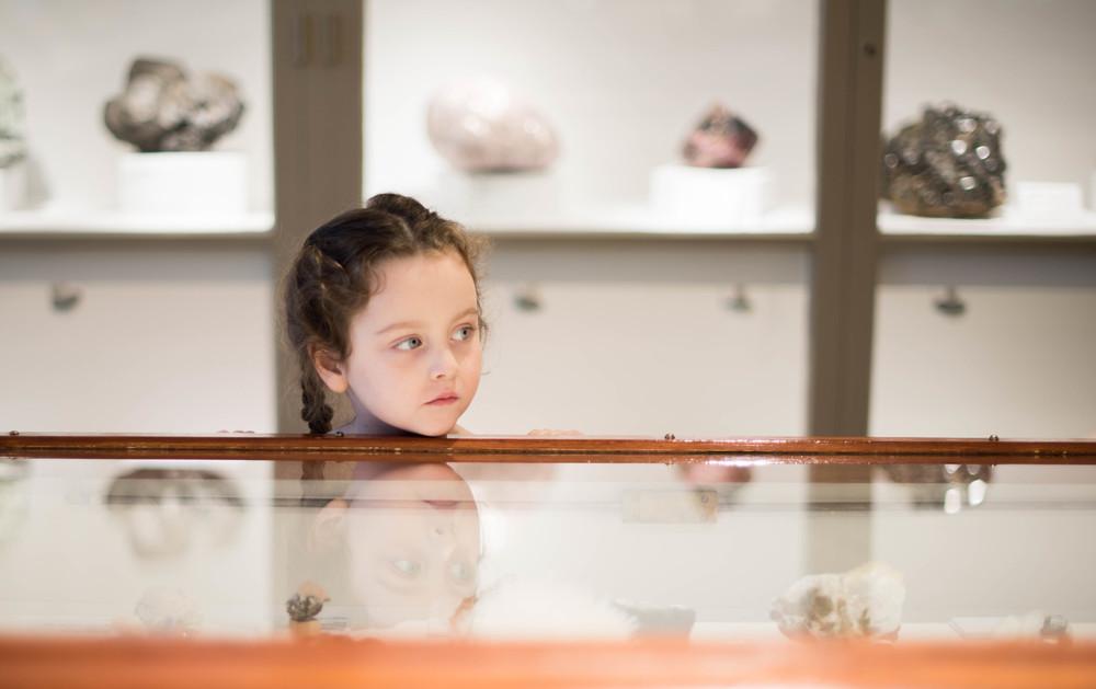 Soor Ploom Museum Natural History-0804.jpg